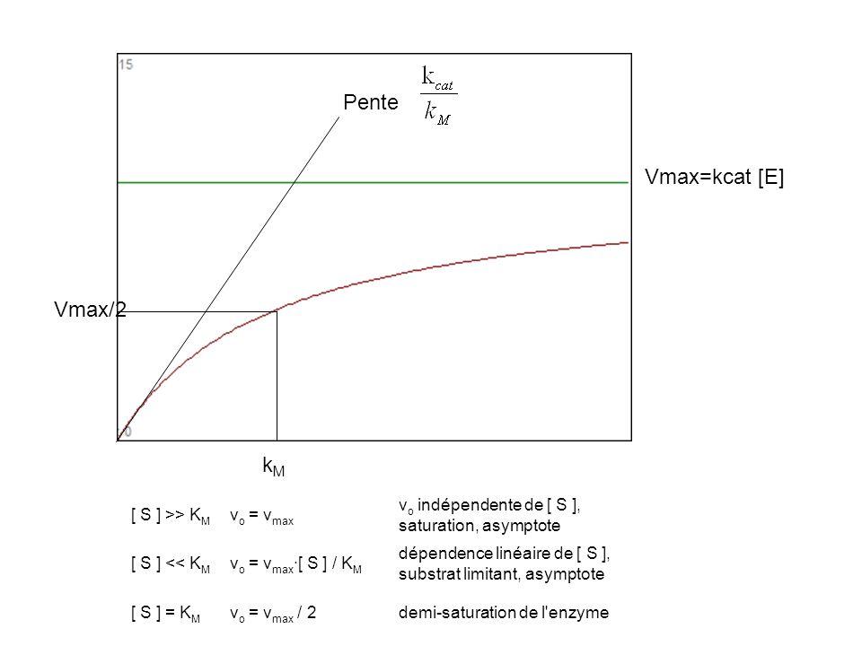 Pente Vmax=kcat [E] Vmax/2 kM [ S ] >> KM vo = vmax